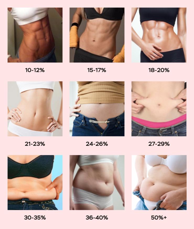 как выглядит жир на животе у женщин